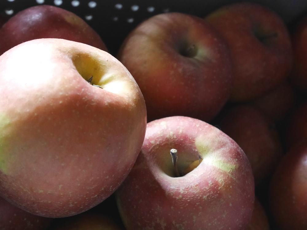 古山果樹園りんご